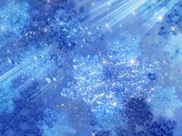 雪の結集.jpg